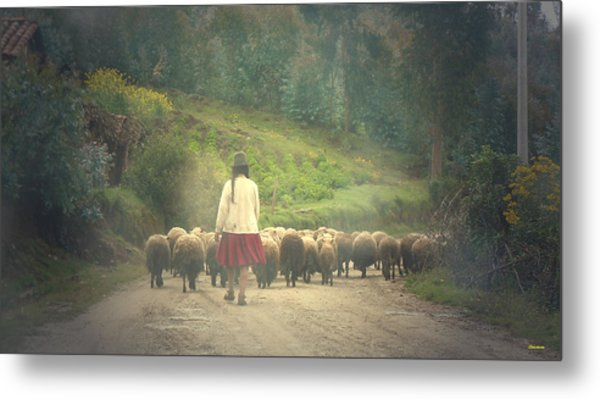 Moving To Greener Pastures Ankawasi Peru Metal Print