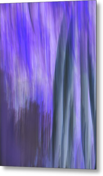 Moving Trees 37-36 Portrait Format Metal Print