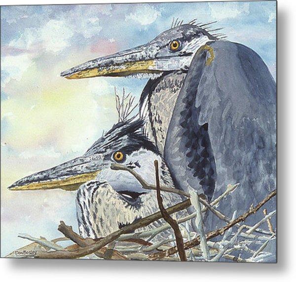 Mr And Mrs Bird Metal Print