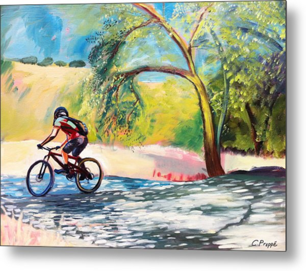 Mt. Bike With Tree Shadows Metal Print by Colleen Proppe