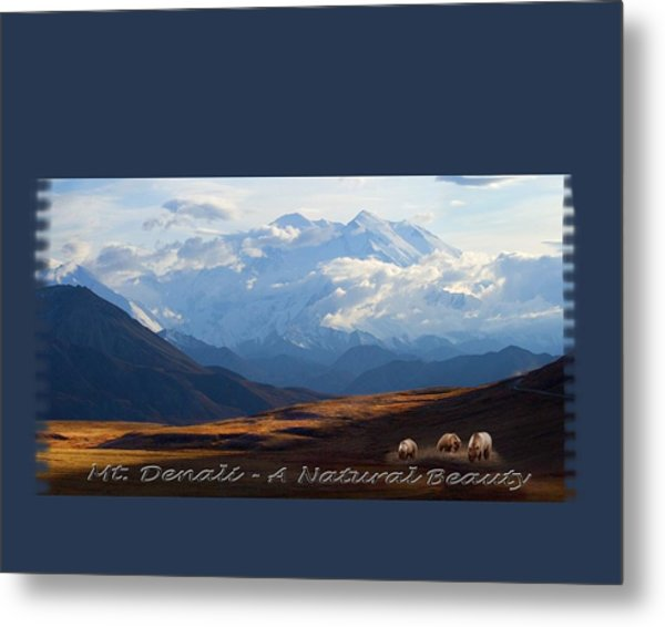 Mt. Denali National Park Metal Print