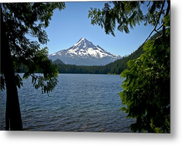 Mt Hood Over Lost Lake Metal Print