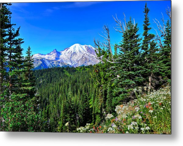 Mt. Rainier Wildflowers Metal Print