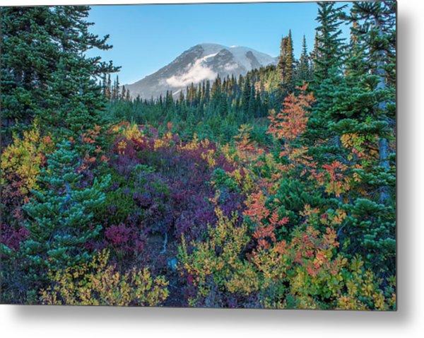 Mt Rainier With Autumn Colors Metal Print