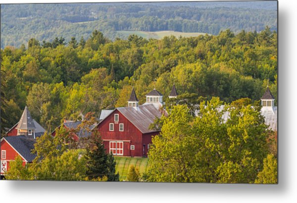 Mt View Farm In Summer Metal Print