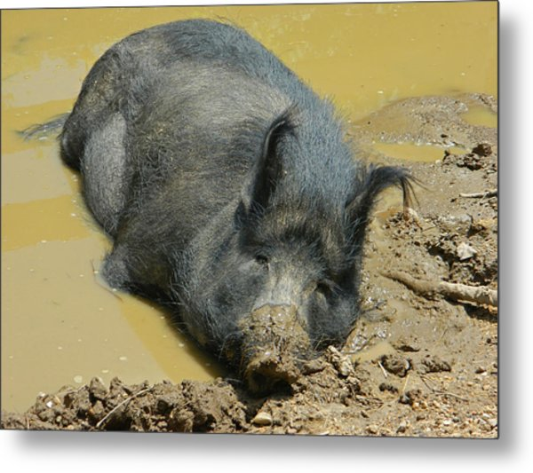 Mud Spa Metal Print