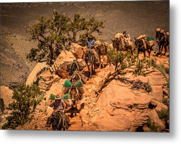 Mule Train In Grand Canyon Metal Print