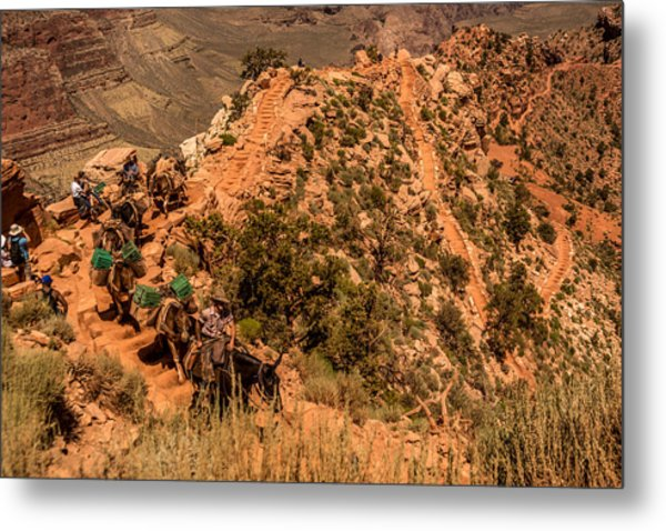 Mule Train South Kaibab Trail Metal Print