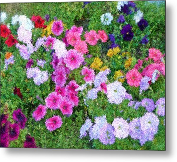 Multi Color Flowers Metal Print by Ralph Liebstein