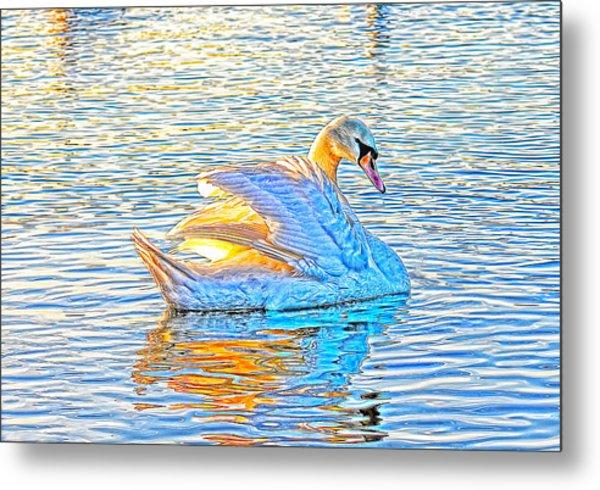 Multicolour Swan Metal Print