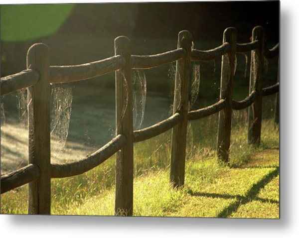 Multiple Spiderwebs On Wooden Fence Metal Print