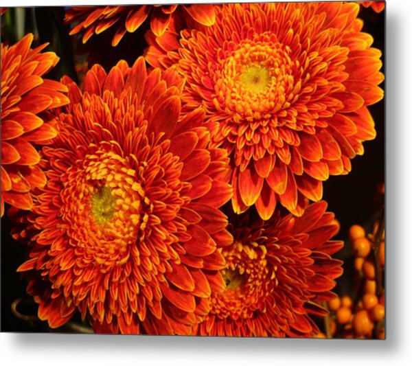 Mums In Flames Metal Print