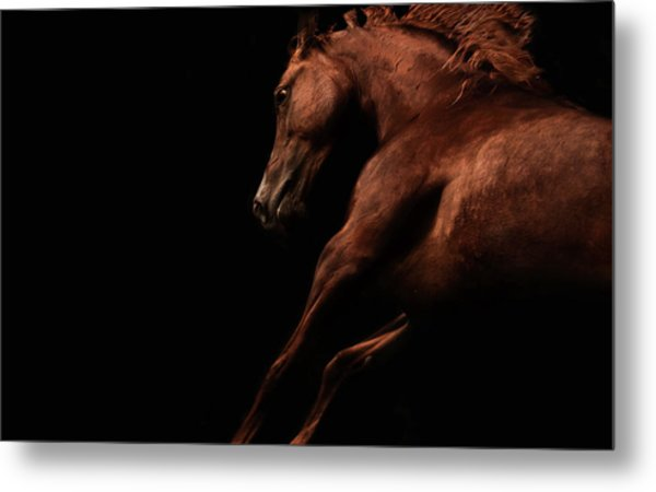 Muscle And Motion Metal Print