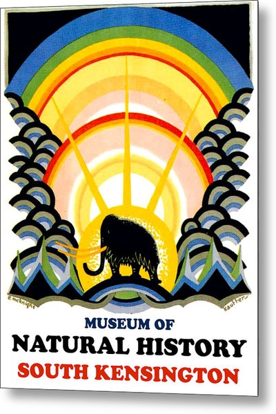 Museum Of Natural History, South Kensington Metal Print