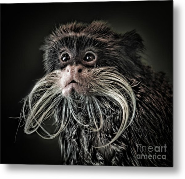Mustache Monkey IIi Altered Metal Print