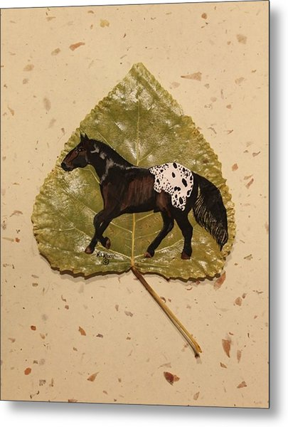Mustang Appaloosa On Poplar Leaf Metal Print