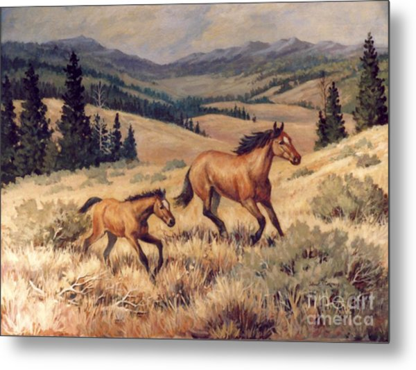 Mustangs      Mare And Foal Escaping Metal Print by JoAnne Corpany