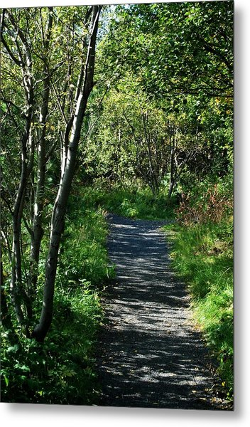 My Favorite Path Metal Print