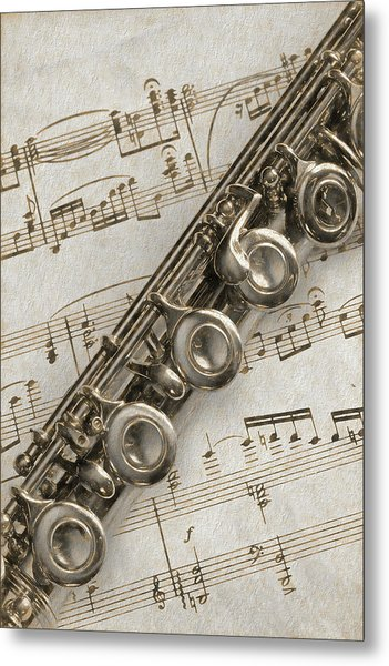 My Flute Photo Sketch Metal Print