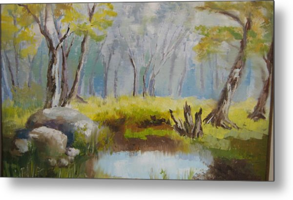 My Pond Metal Print by Mabel Moyano