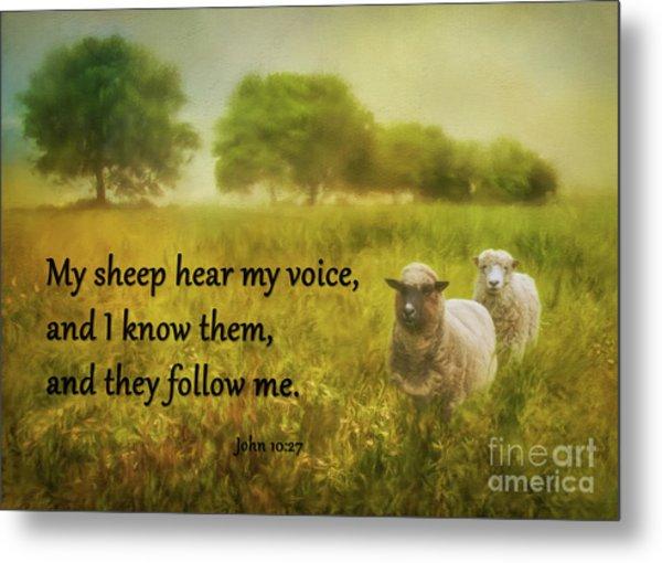 My Sheep Hear My Voice Metal Print