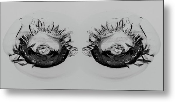 My What Pretty Eyes You Have Metal Print