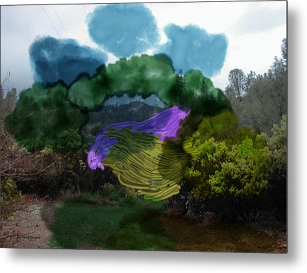 Mysteries In The Chapparal Metal Print