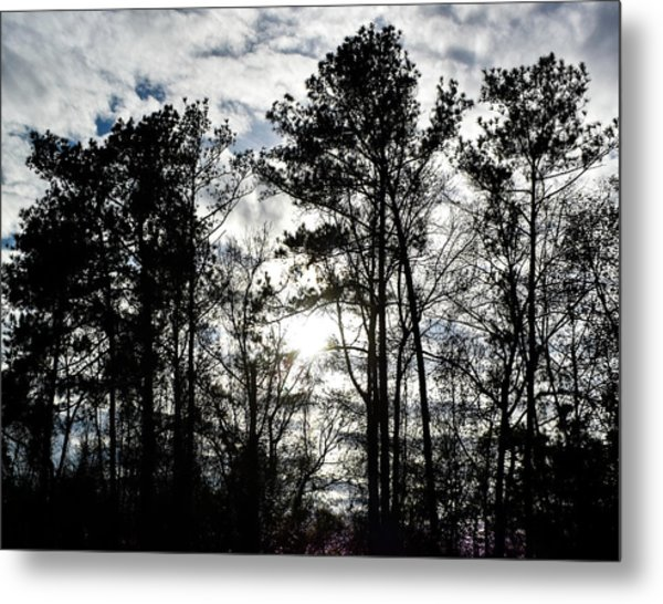 Mystic Wilderness Metal Print