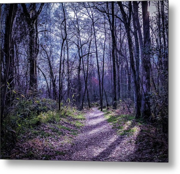 Mystical Trail Metal Print