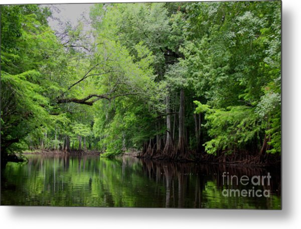 Mystical Withlacoochee River Metal Print