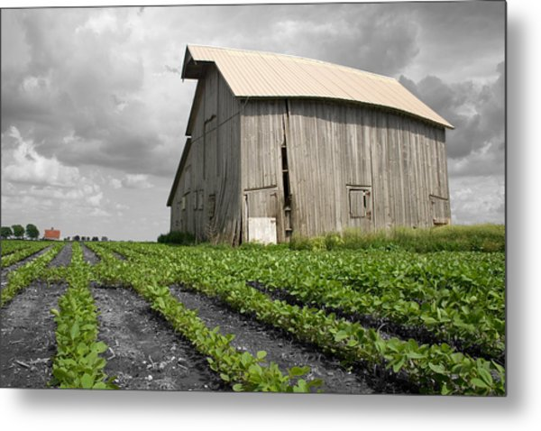 Metal Print featuring the photograph N 1650 East by Dylan Punke