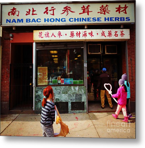 Metal Print featuring the photograph Nam Bac Hong Chinese Herbs, Chinatown, Boston, Massachusetts by Lita Kelley