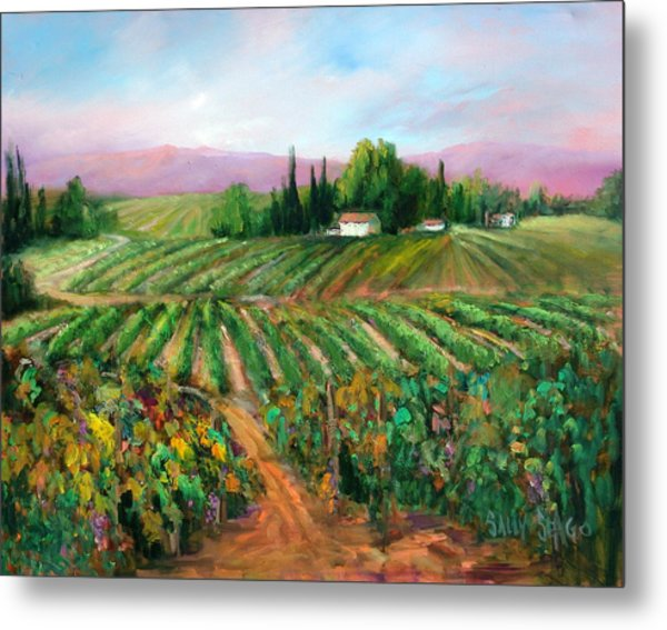 Napa Harvest Metal Print by Sally Seago