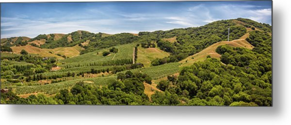 Metal Print featuring the photograph Napa Valley California Panoramic by Adam Romanowicz
