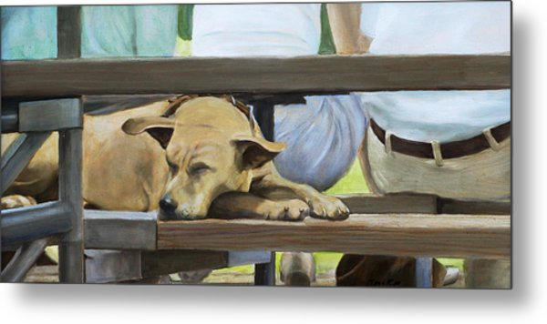 Naptime In The Bleachers Metal Print