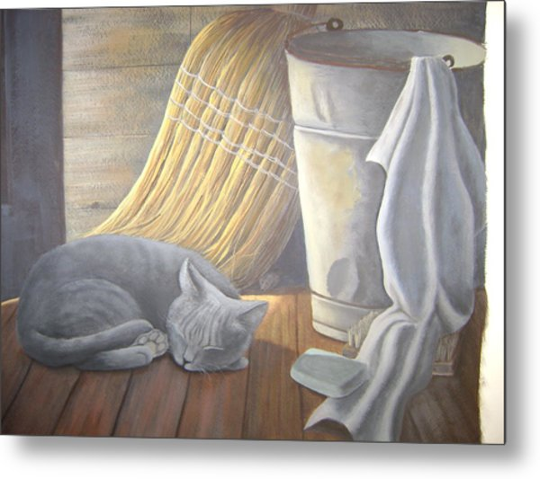 Naptime Metal Print by Judy Keefer