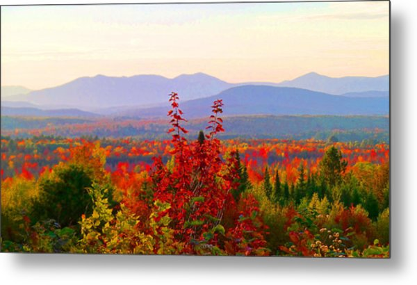 National Scenic Byway Metal Print
