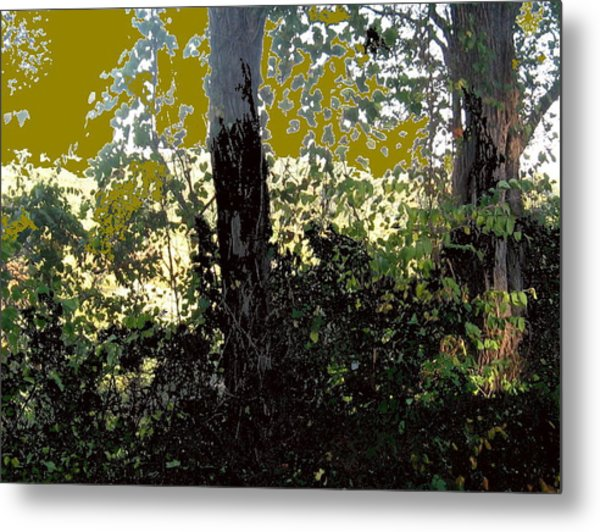 Natura 2 Metal Print by Therese AbouNader