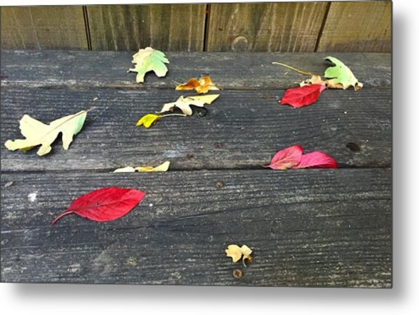 Natural Fall Metal Print
