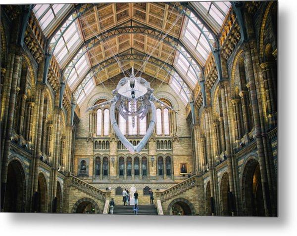 Natural History Museum London Metal Print