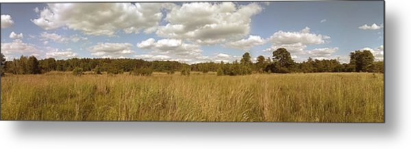 Natural Meadow Landscape Panorama. Metal Print
