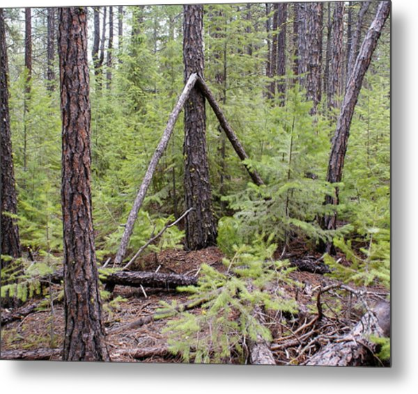 Metal Print featuring the photograph Natural Peace In The Woods by Ben Upham III