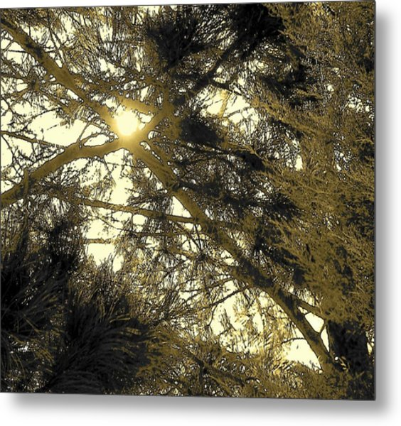 Nature In The Crosshairs Metal Print