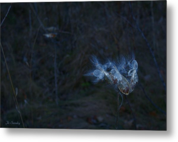 Natures Fairies Metal Print