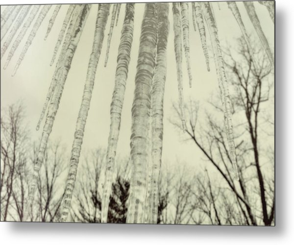 Nature's Ice Pop Metal Print by JAMART Photography