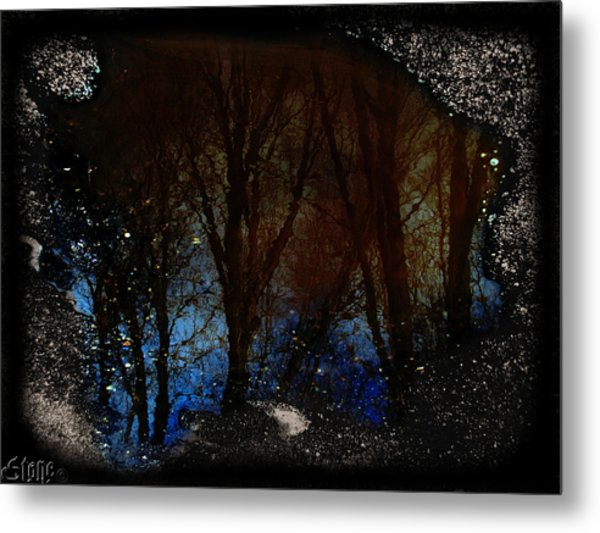 Natures Looking Glass 2 Metal Print