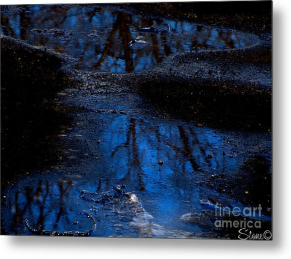 Natures Looking Glass Metal Print