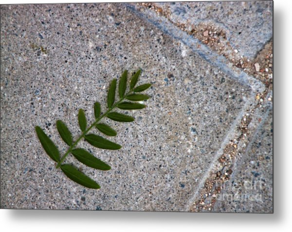 Nature's Trace Metal Print