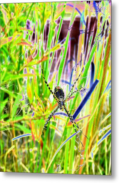 Nature's X Metal Print by Peter  McIntosh