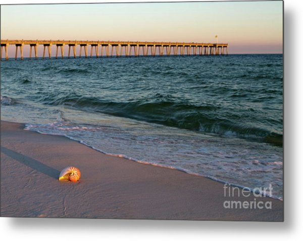 Metal Print featuring the photograph Nautilus And Pier by Steven Frame